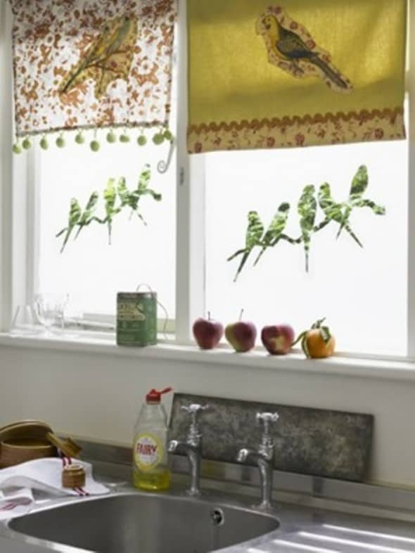 Birds at your kitchen windows