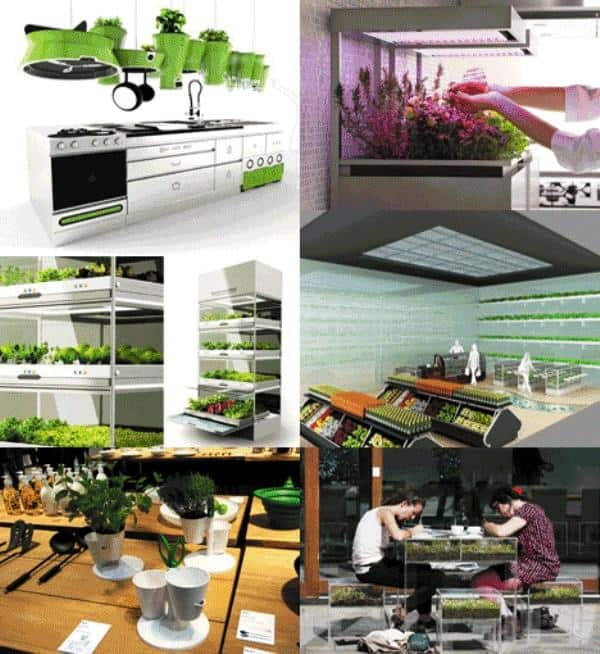 Kitchen Nano Garden _b570ll_Design