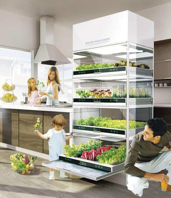 Kitchen Nano Garden _b571ll_Design