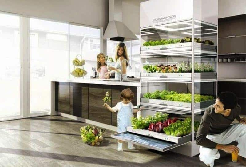 Kitchen Nano Garden _b577ll_Design