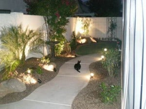 Lit Walkways with Low Mounds and Plants