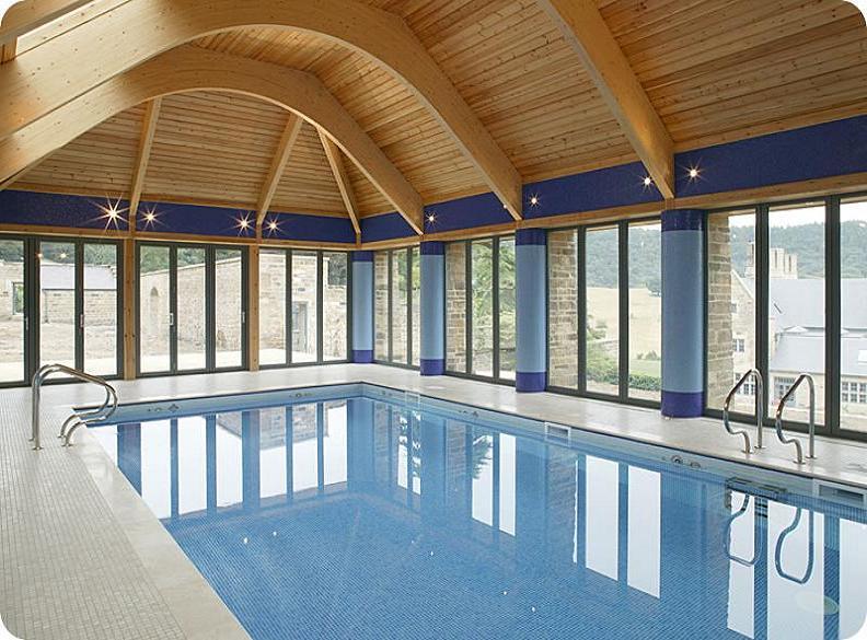 Cool Looking Indoor Pool